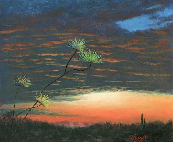 Дыхание Земли, Гармония мира, Sonora Sunrise